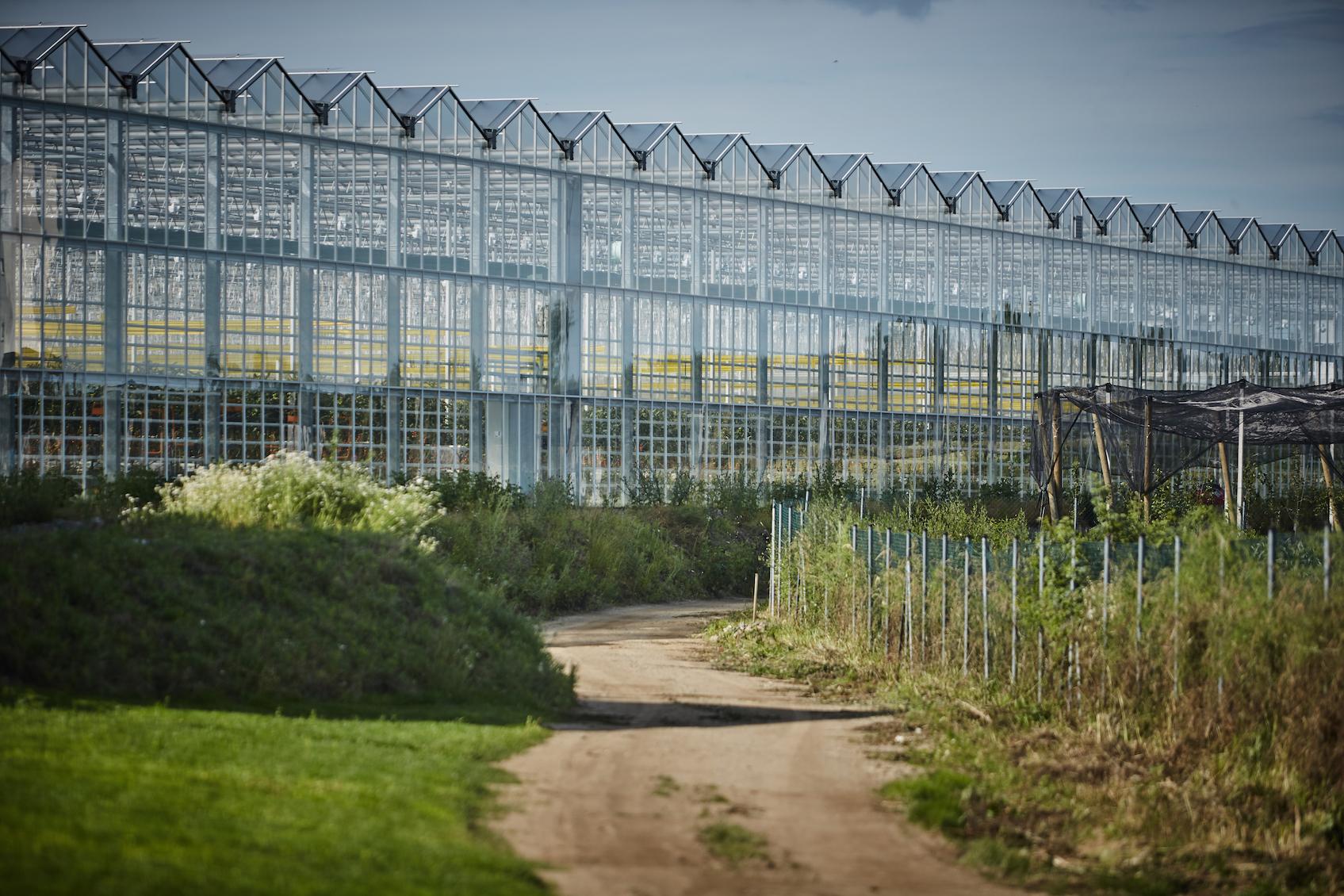 Farma v Kožichovicích – energetický systém pro zemědělství budoucnosti