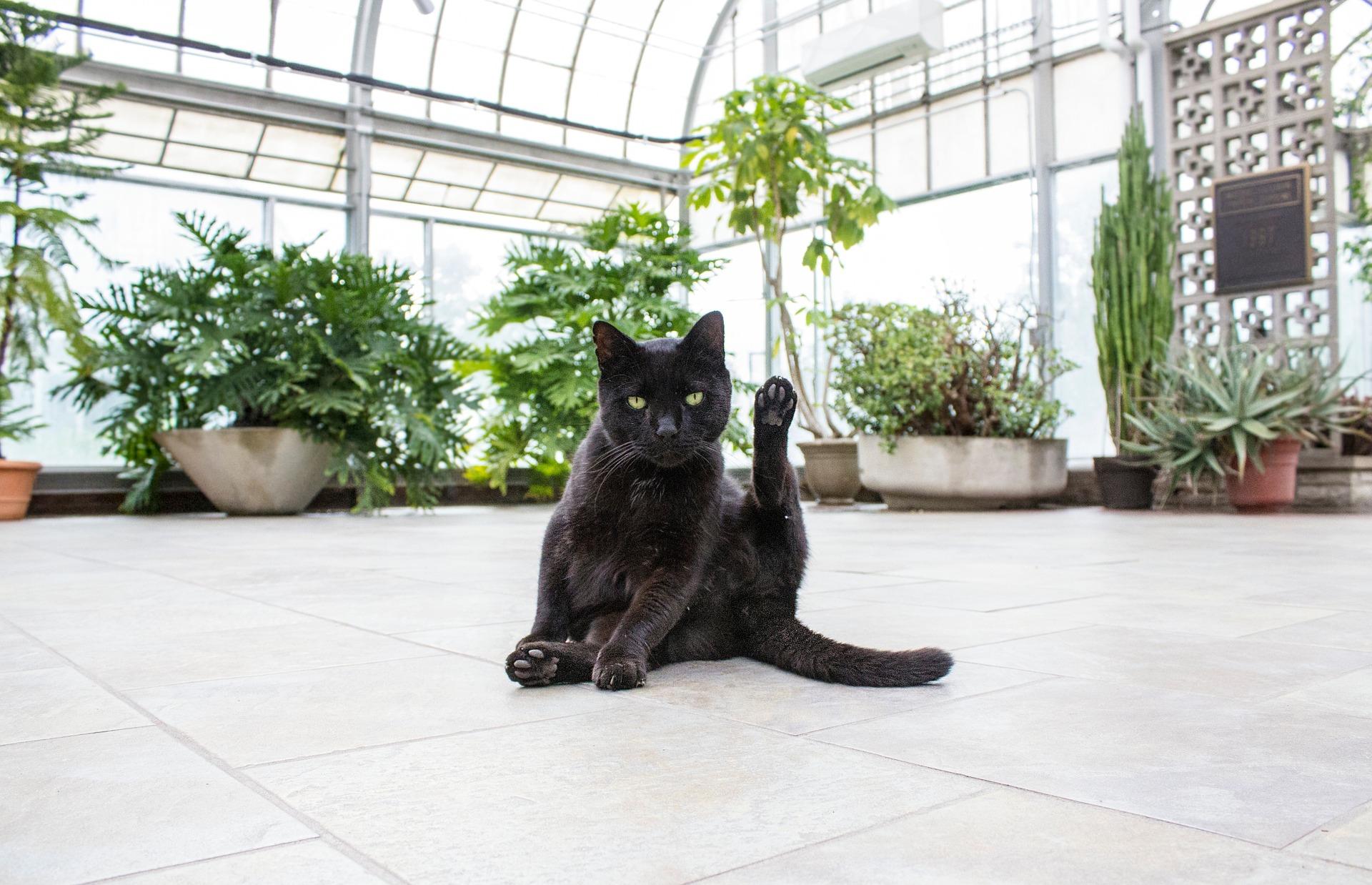 Podlahové topení – nohy v teple mají výhody i nevýhody