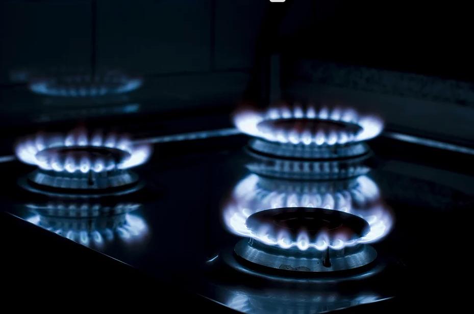 Velikost dodavatelů plynu pro rok 2019
